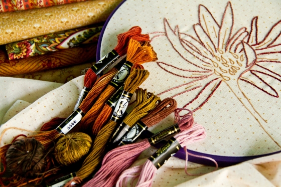 Asters in Progress